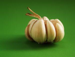 garlic.rebelretirment.450