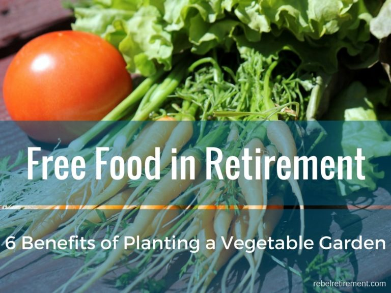 [Free Food in Retirement] 6 Benefits of Planting a Vegetable Garden