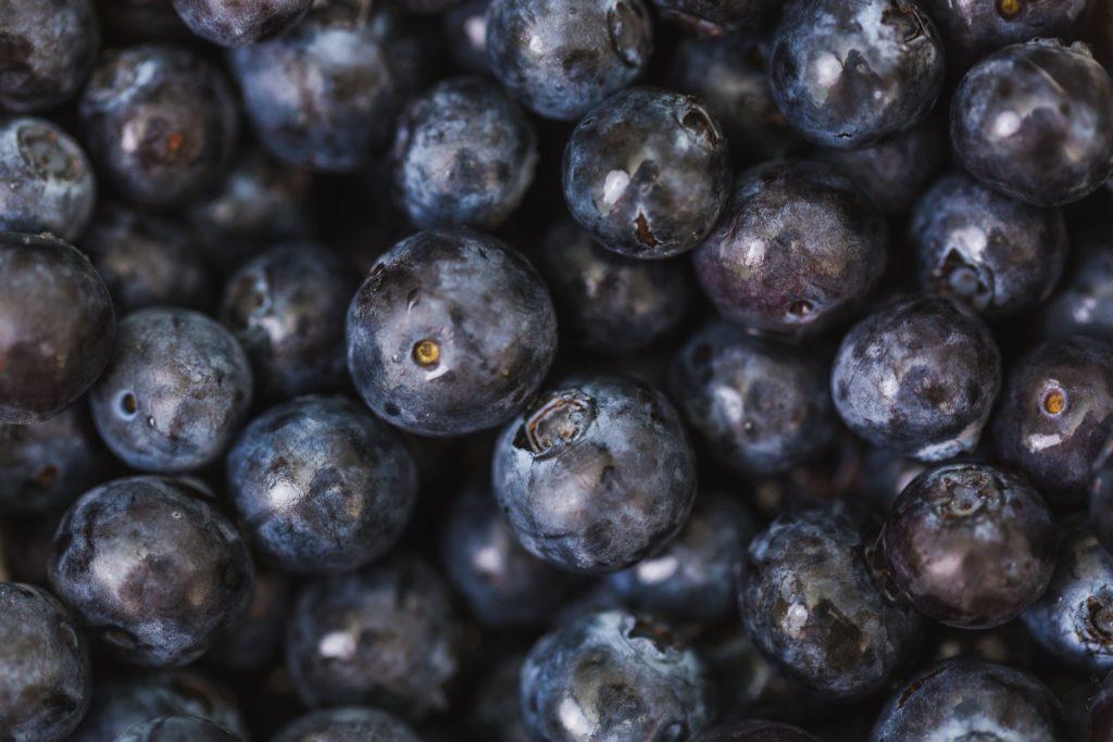 Blueberries - Rebel Retirement