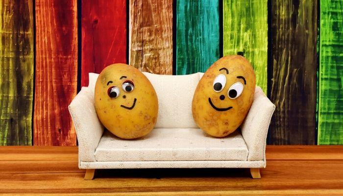 Couch Potato - Rebel Retirement